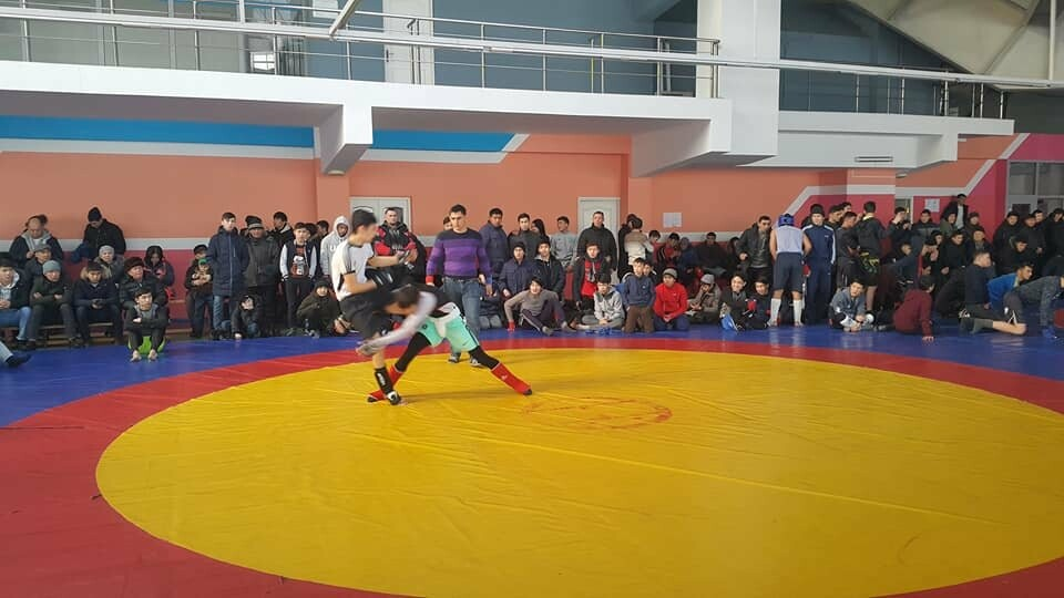 В Талдыкоргане прошли областные соревнования по Панкратиону, фото-2