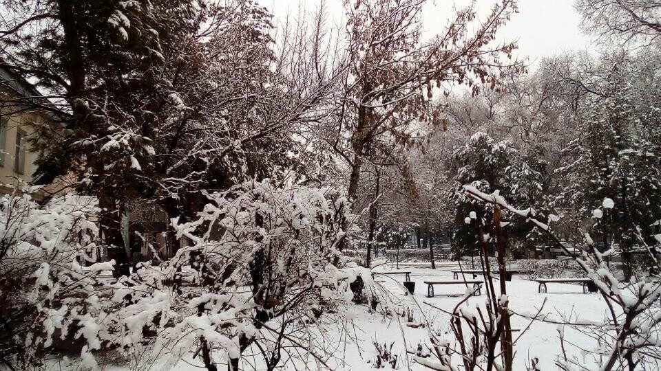 В Талдыкорган в марте опять пришла зима, фото-1