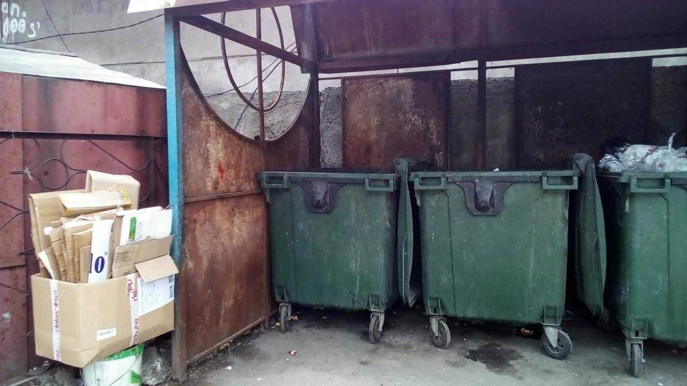 "На мусорке в КСК ""Романтик"" навели порядок, фото-2"