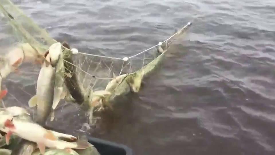 Полиция ведет борьбу с браконьерами на реках Жетысу, фото-1