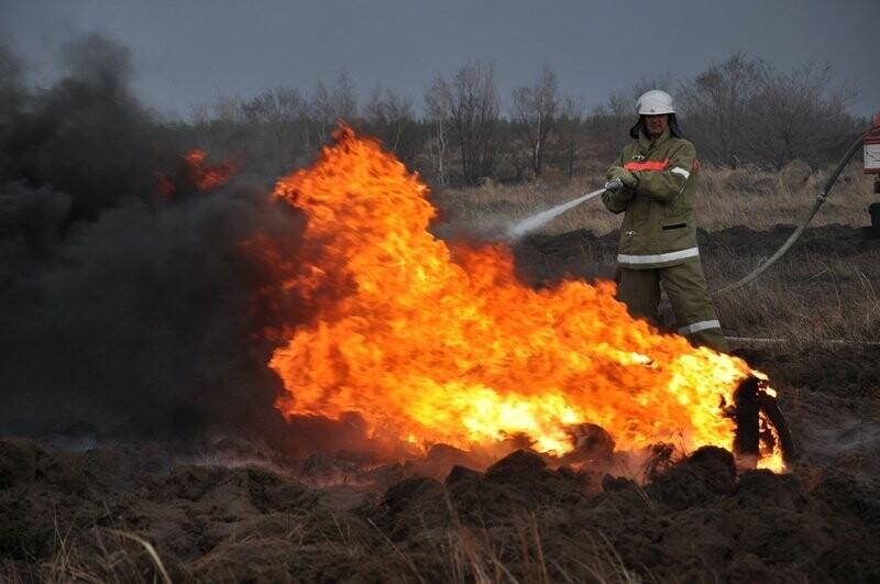 Учения по предотвращению пожаров прошли в Жетысу, фото-1