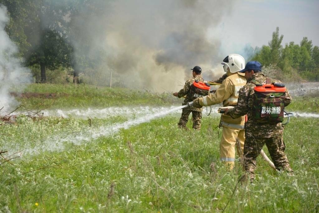 Учения по предотвращению пожаров прошли в Жетысу, фото-2