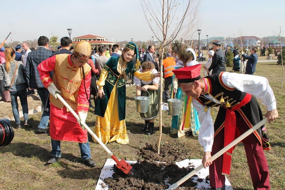 Дом дружбы отметил праздник  Наурыз - высадкой деревьев и угощением, фото-5