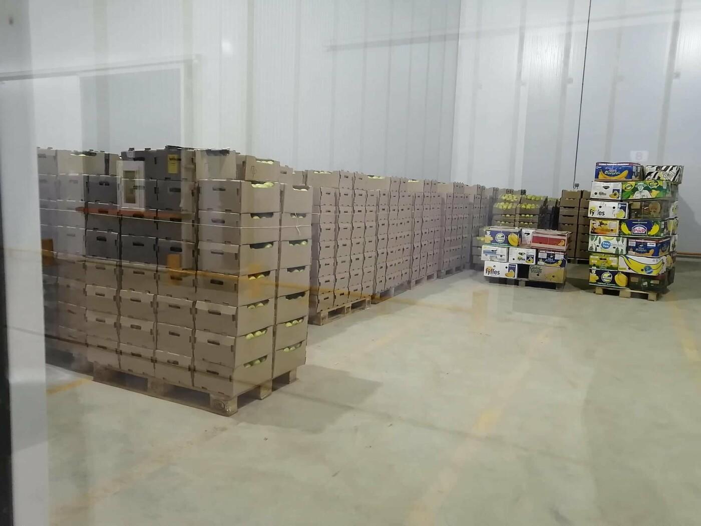 Склад для хранения яблок и  свиноводческий комплекс открылись в Алматинской области, фото-3